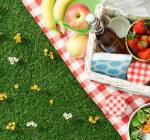 28 Easy Picnic Basket Recipes