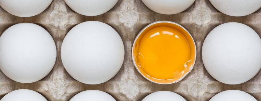 7 Egg Hacks to Transform Your Breakfast Routine