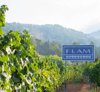 The Other Side of the Cork: Flam Winery: A Family Affair