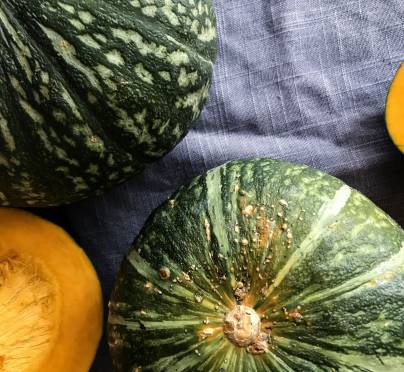 What is Kabocha Squash?