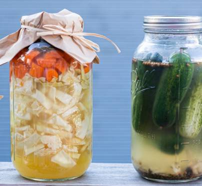 Complete Guide to Get Started with Fermenting Foods at Home