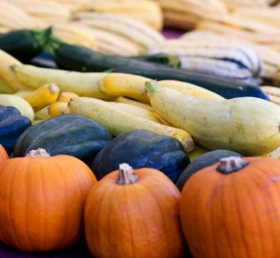 Autumn Harvest Peak! 4 Seasonal Superfoods to Cook with Right Now