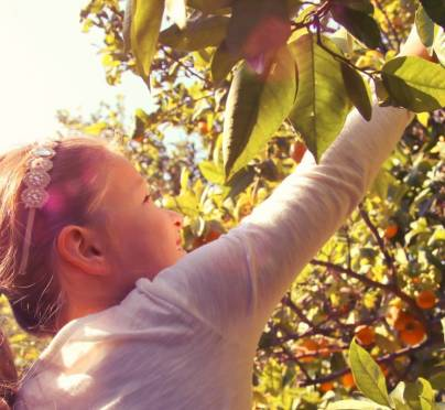9 Memorable Things to Do with Your Family on Sukkot Chol Hamoed