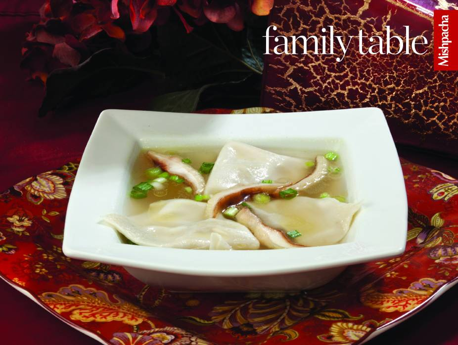 Wonton soup recipes kosher forumfinder Choice Image