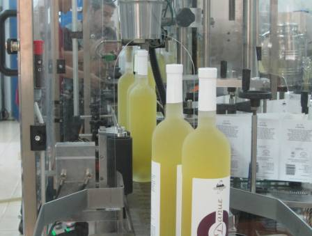 Wines Without Grapes: Fruit Wine for Tu B'shevat