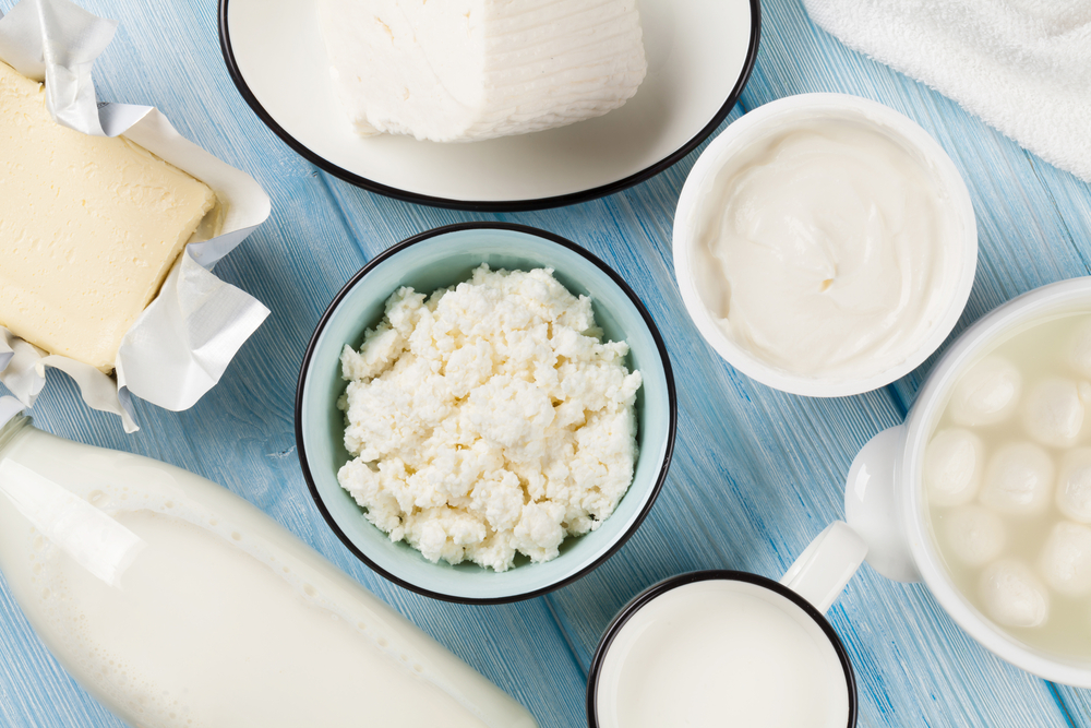 Assorted Dairy Products Photo